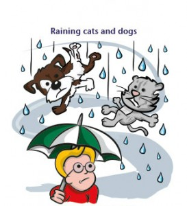 English idioms - weather_1